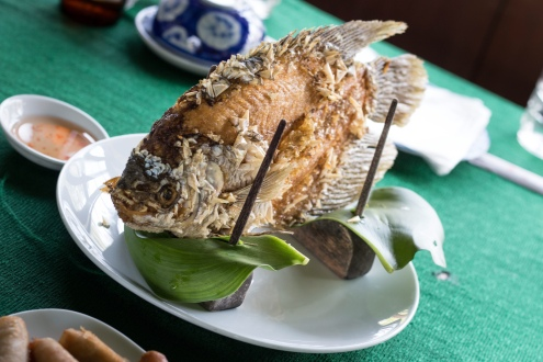 Elephant ear fish for lunch